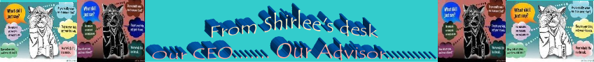 shirleedesk
